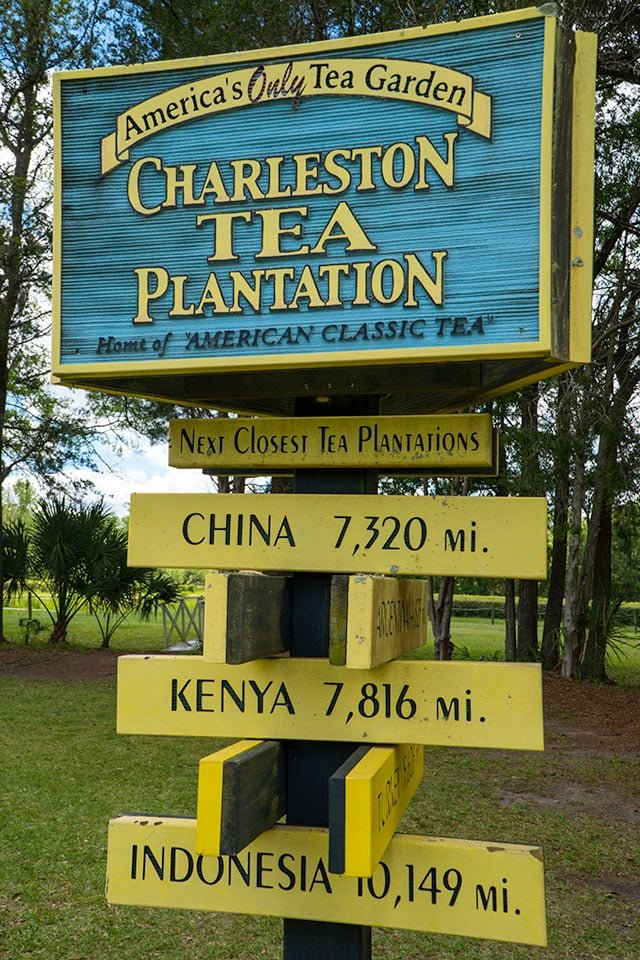 Charleston Tea Sign