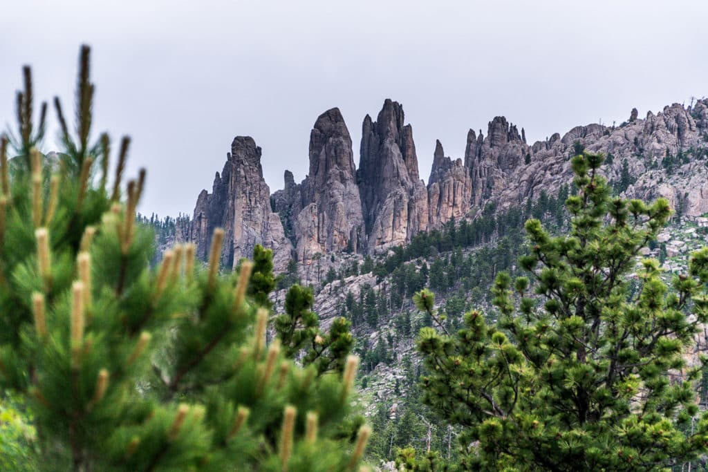 ultimate south dakota travel guide: needles highway