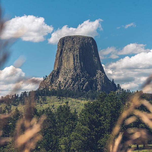 national parks guide: a photo of devil's tower national monument