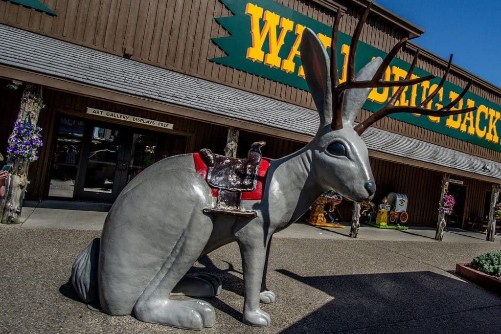 ultimate south dakota travel guide: wall drug